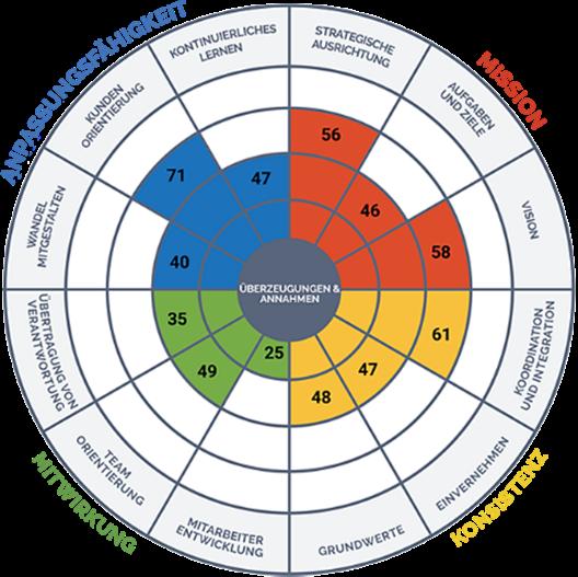 Denison Organizational Cultural Assessment